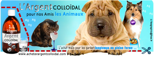 Argent-colloidal-animaux